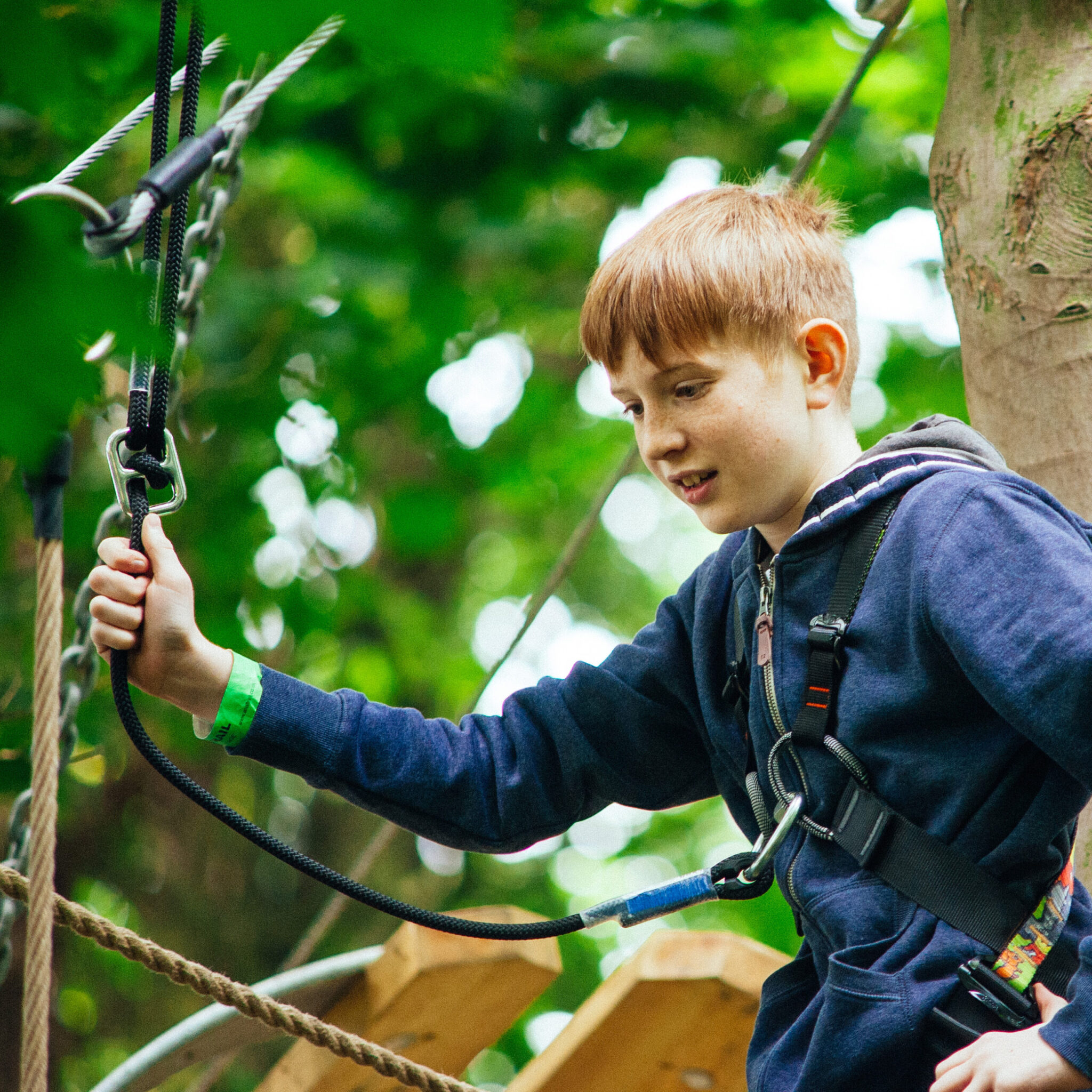 High_Ropes_16_highres-5129